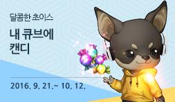 신상 강아지 캔디가 출시 되었습니다. 이디안, 신규 의상 등과 함께 만나보세요. 2016. 9. 21.(수) ~ 10. 12.(수)