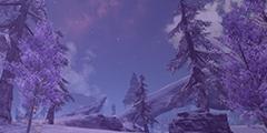 겨울빛 출석부
