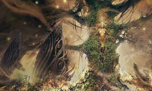 새로워진 요정 숲